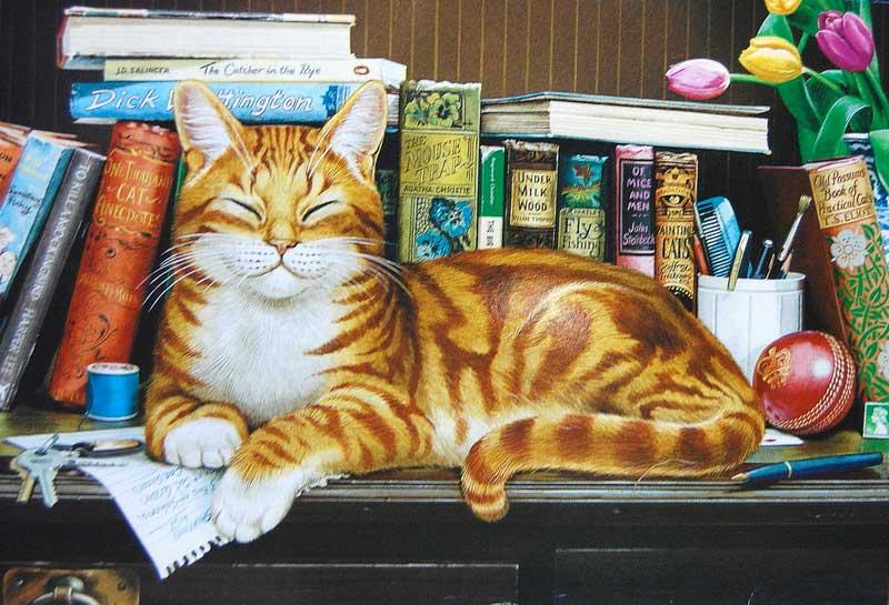 кошки-кошки-18.jpg