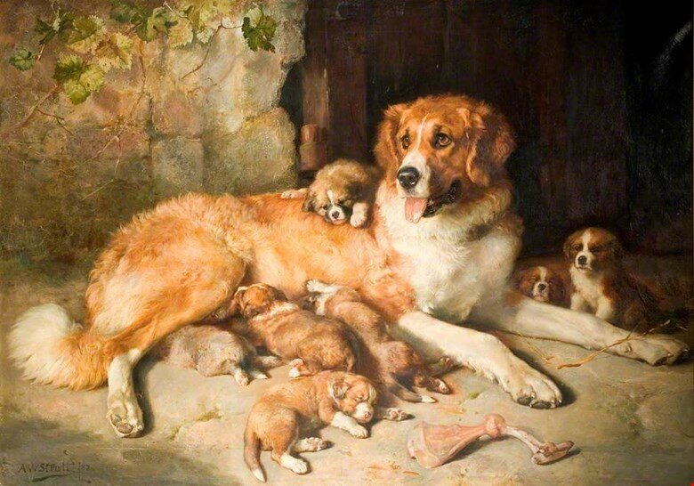 Картинка собака с щенком для детей, сахарной