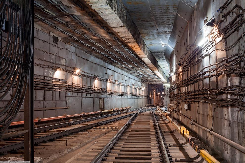 12. Плотность пассажиропотока Московского метрополитена в час пик достигает 7,7 человека на 1 м