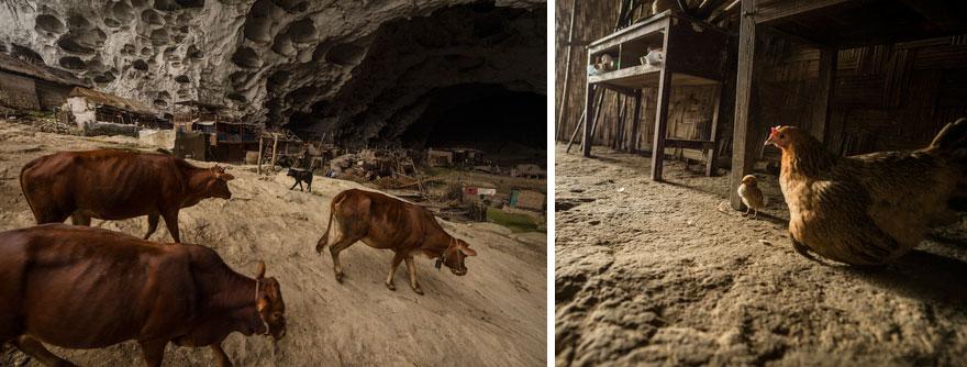 Жители разводят домашний скот, так как до ближайшего рынка полтора часа пешком по горам.