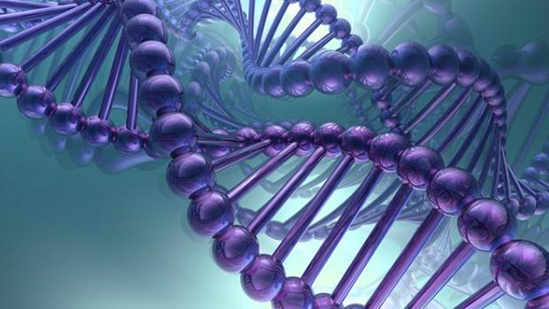 Ученые: Близкие друзья имеют идентичные ДНК— как двоюродные братья исестры