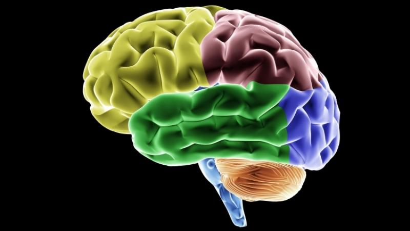 Ученые: лишенные сна люди острее воспринимают запах еды
