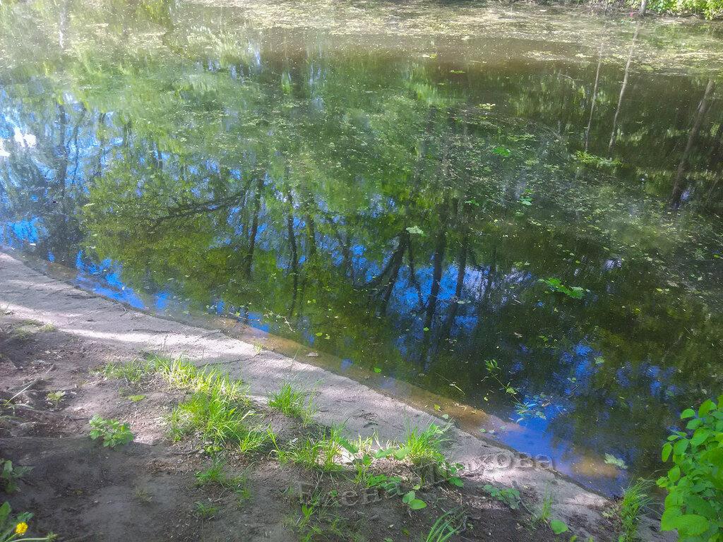 Тимирязевский парк-31 copy.jpg