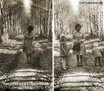 Говоровский лес, 1978 год, фото Валентина Ноздрина