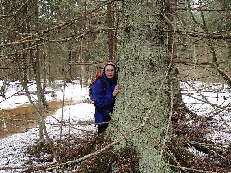 я и большая елка