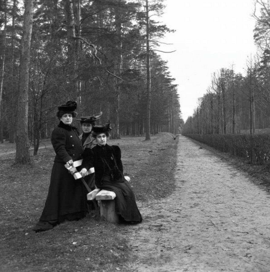 1904. Весенняя прогулка в Сокольники. Майский проспект