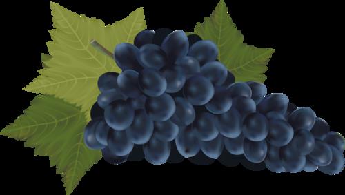 виноград (18).png