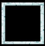 feli_syd_square frame.png