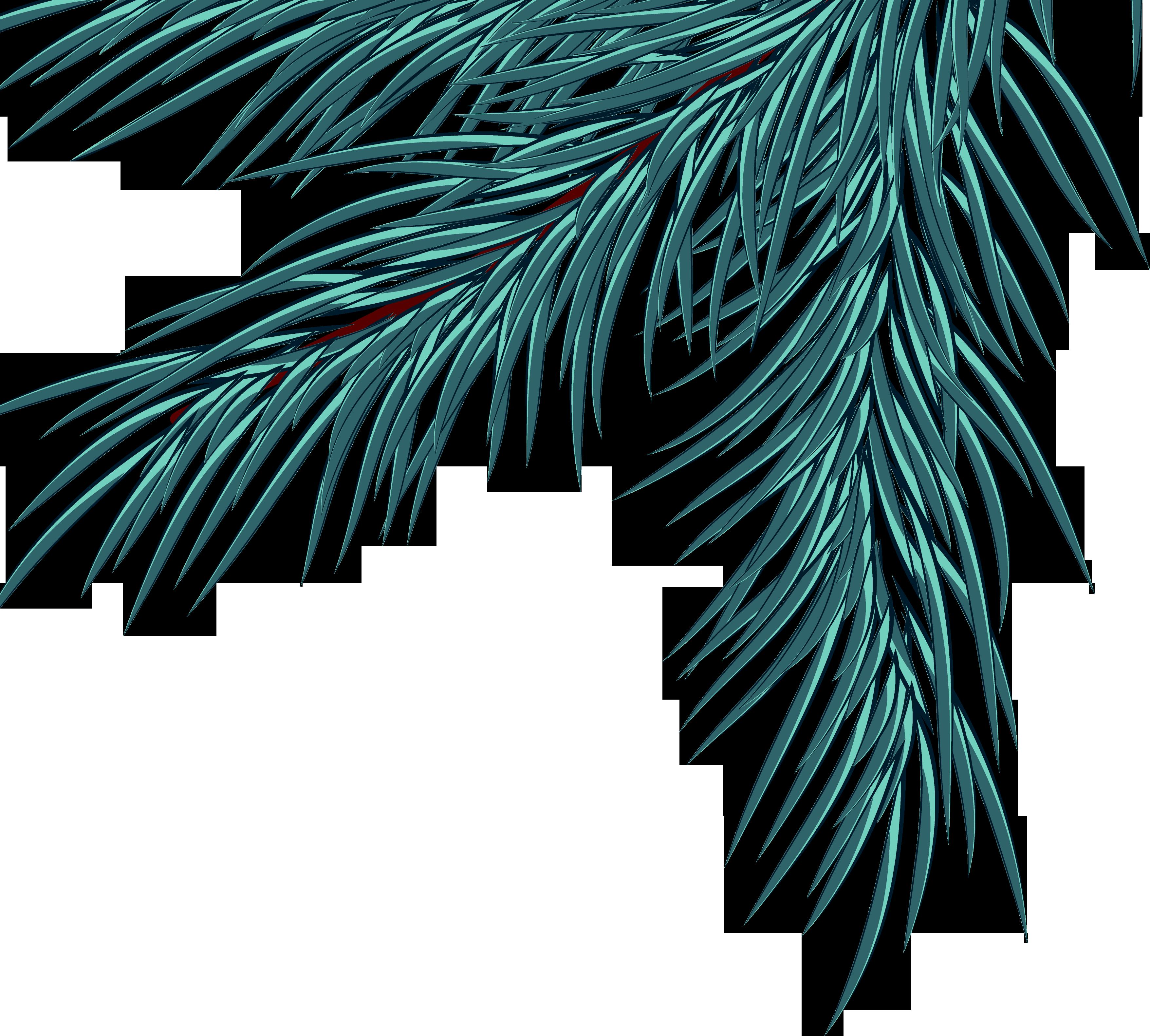 картинка еловая ветвь на прозрачном фоне