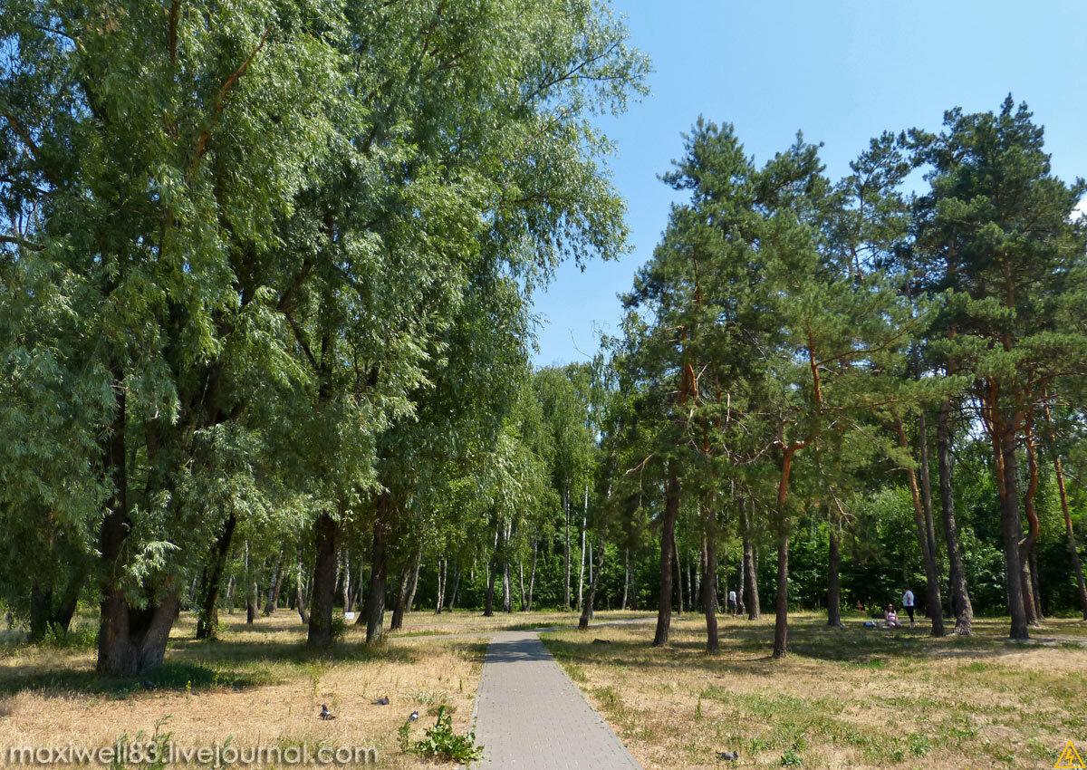 Парк «Перемога» у Києві