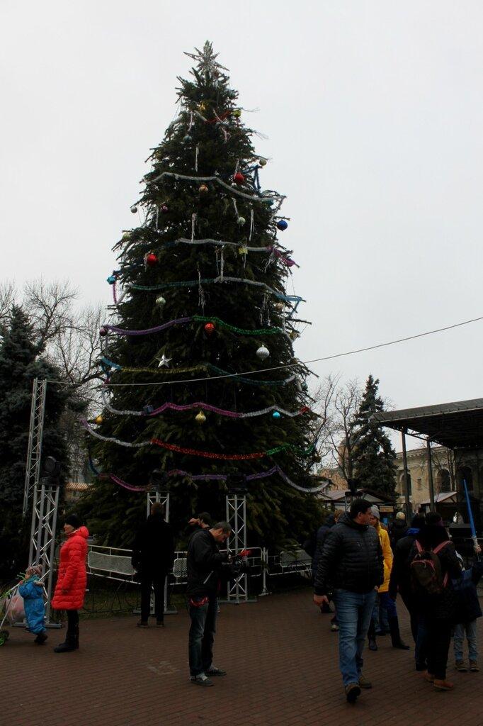 Новогодняя ёлка на Контрактовой площади