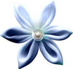 "Скрап набор ""цветочная улыбка"" 0_740d2_daf0c058_S"