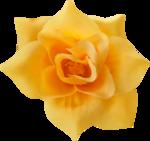 """Скрап набор """"цветочная улыбка"""" 0_740d9_3131582b_S"""
