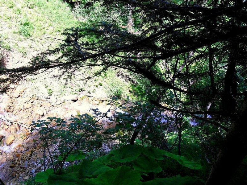 На тропе у Лунных водопадов ... SAM_0516.JPG