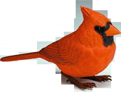Ptice..... 0_758b8_67b3deb7_L