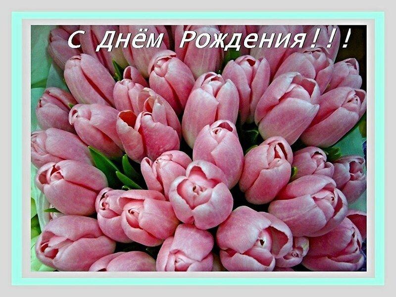 Открытки открытый, картинки с днем рождения цветы тюльпаны с надписями