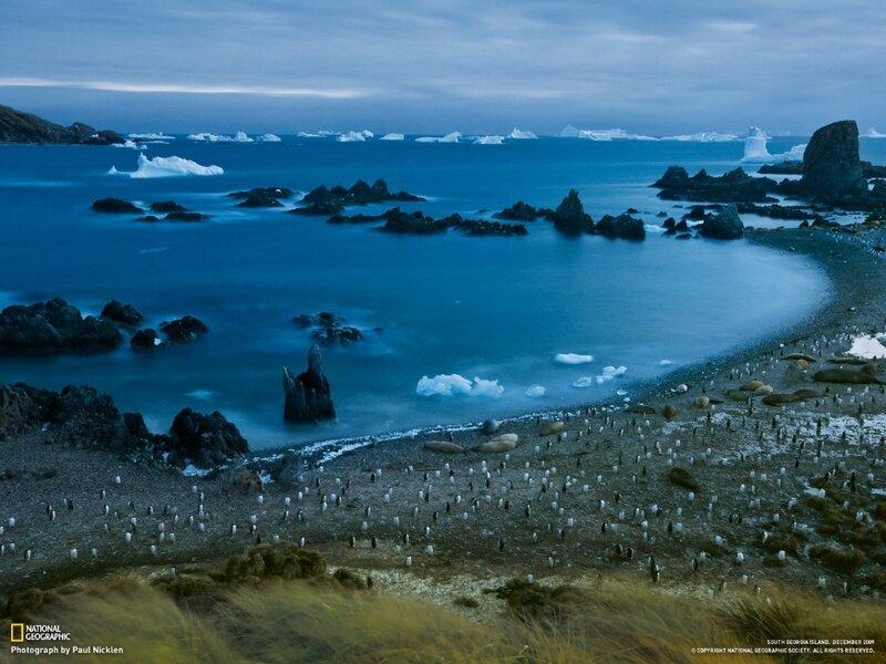 Фотографии общества National Geographic 2