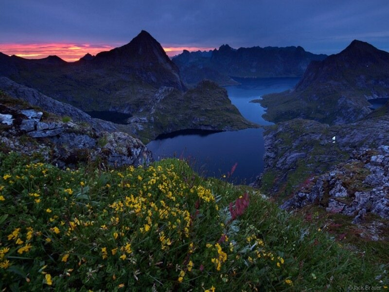 Lofoten Night