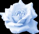 WishingonaStarr_Blue0012a.png