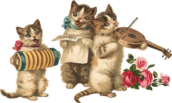 Прикольные истории о котах - Страница 2 0_54636_6b77195_XL