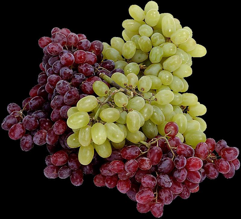 Наверх of the page up there.  Сообщений.  Legrotalie (20 August 2010, 09:29) писал. лодка резиновая. люблю виноград.