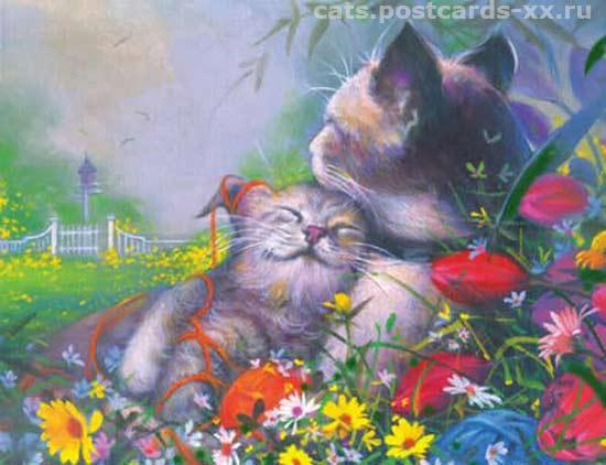 Кошачье счастье. Художник Thomas Galasinski