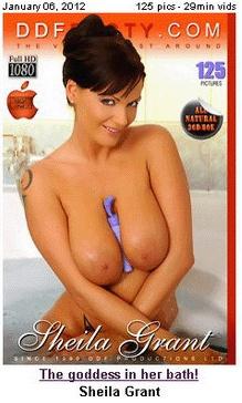 Журнал DDFBusty - 01-2012 - SHEILA