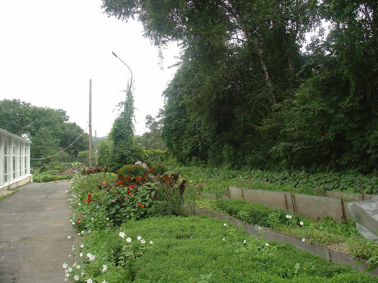 Vladivostok. Garden Botanical.