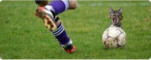 Как увеличить силу удара в футболе