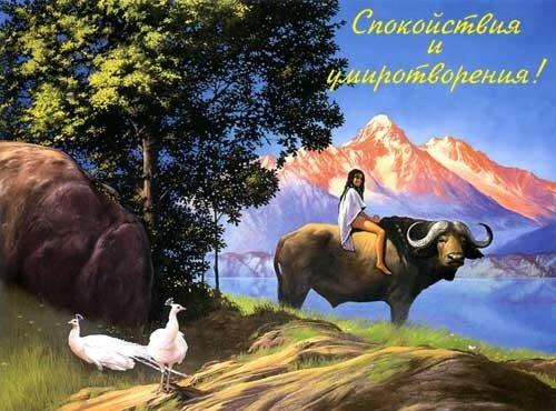 http://img-fotki.yandex.ru/get/5904/bvi2005.0/0_12612d_1853d980_L.jpg