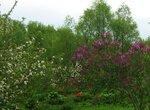 Во дворе весна