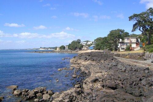 Жизнь на  побережье