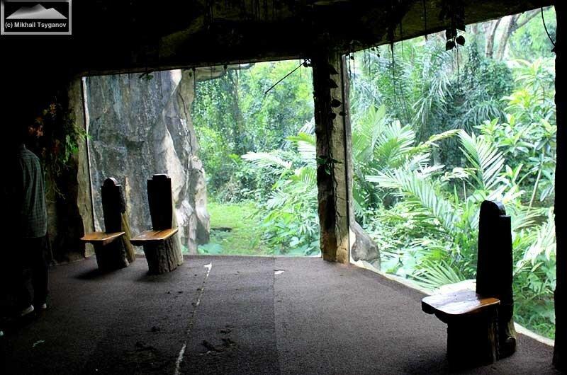 Центр приматов