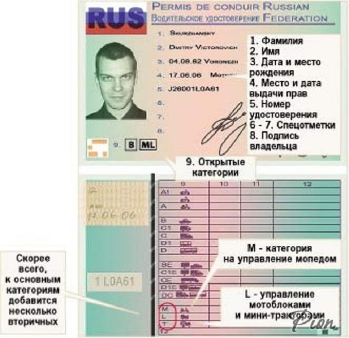 В России началась выдача водительских прав международного образца