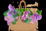 basket-1.png
