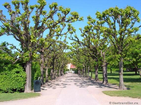 Дания. Копенгаген. Парк Kongens Have.