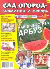 Книга Сад, огород - кормилец и лекарь №19 2013
