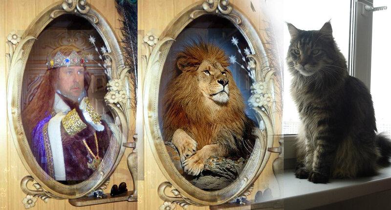 Кот видит в зеркале льва