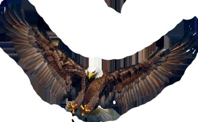 Ptice..... 0_7b72e_2adcd01f_L