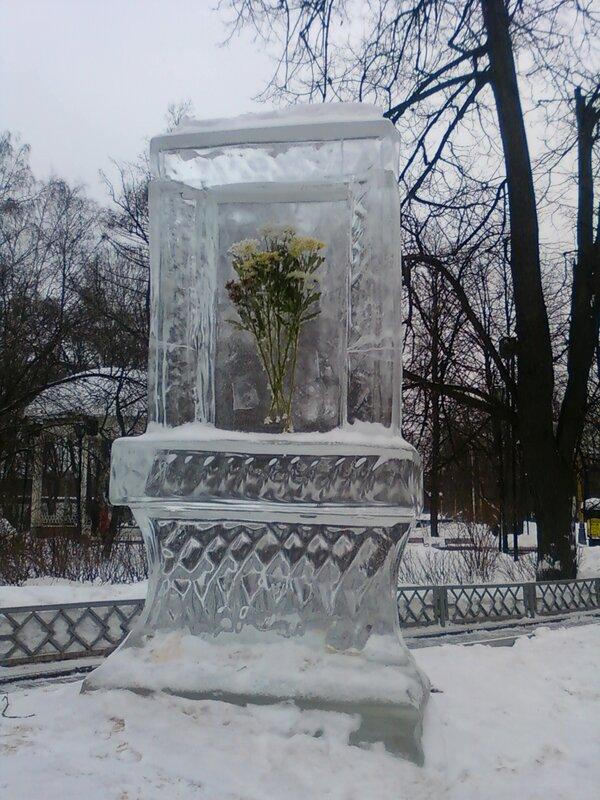 Цветы во льде