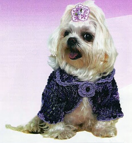 Одежда для животных: фиолетово-сиреневый жакет для собаки