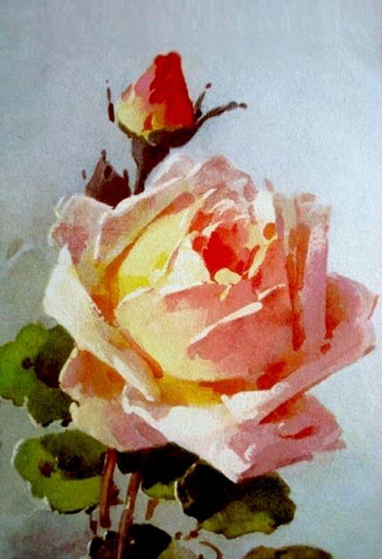 К.Кляйн. Роза.