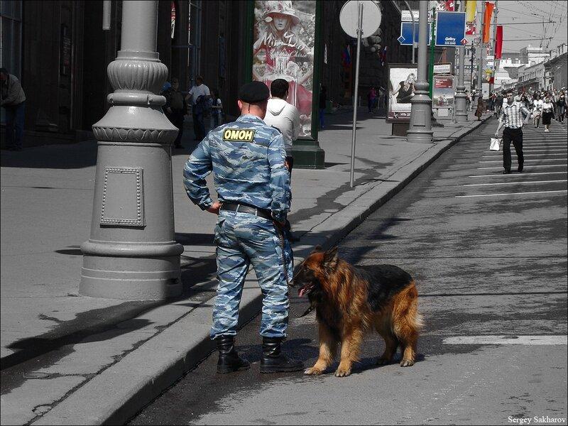 http://img-fotki.yandex.ru/get/5905/sergey-2021.f/0_54446_d821f3d8_XL.jpg