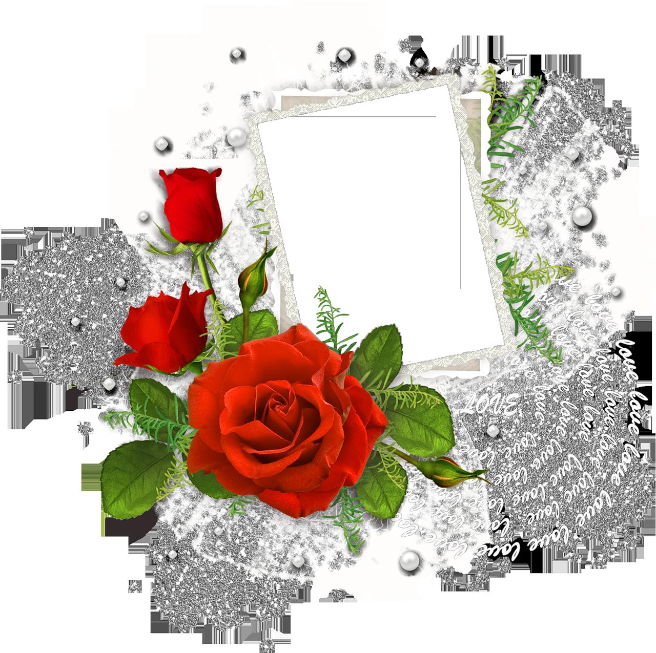 http://img-fotki.yandex.ru/get/5905/svetlera.13/0_4f956_68a19883_orig.png