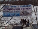 """Строгинские котики - самые веселые """"моржи"""" Москвы!"""