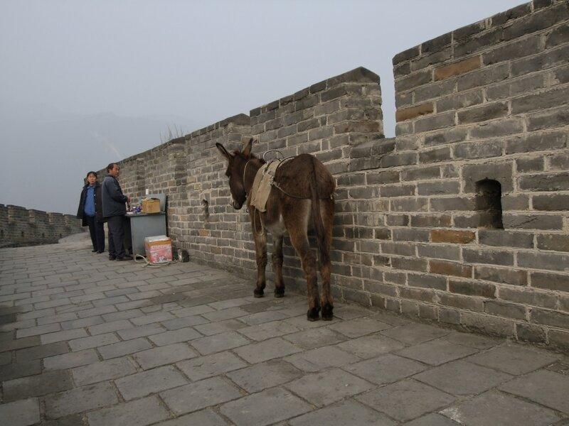 Не туристическая китайская стена Ишак