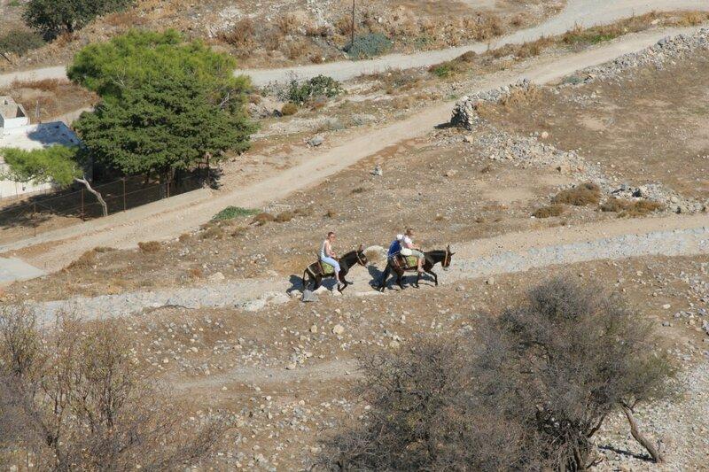 Ослики везут туристов к акрополю