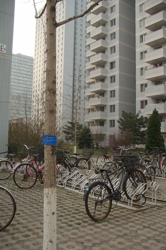 Стоянка для велосипедов в квартале общежитий Китайской академии наук, Пекин