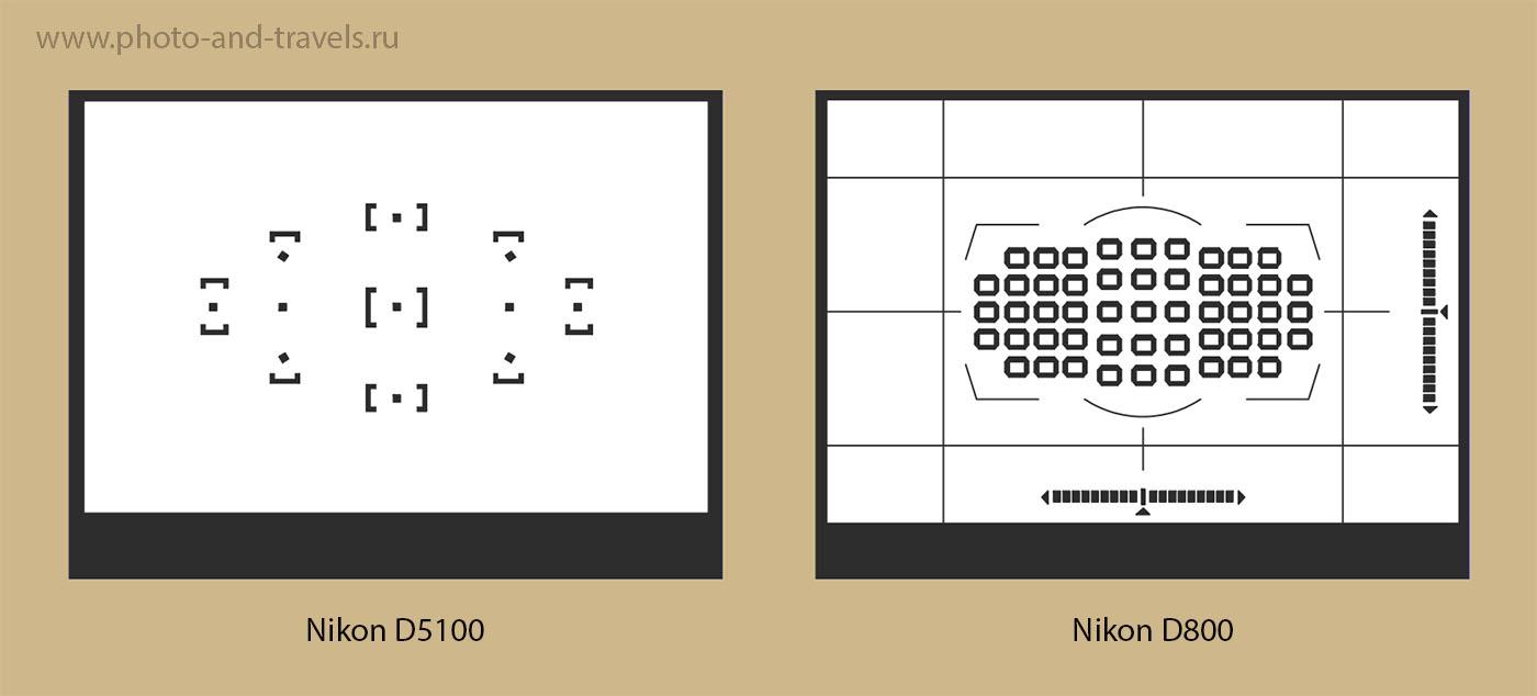2. Курсы фотографии для новичков. Схема расположения точек фокусировки в видоискателе зеркалок Nikon D5100 и Nikon D800
