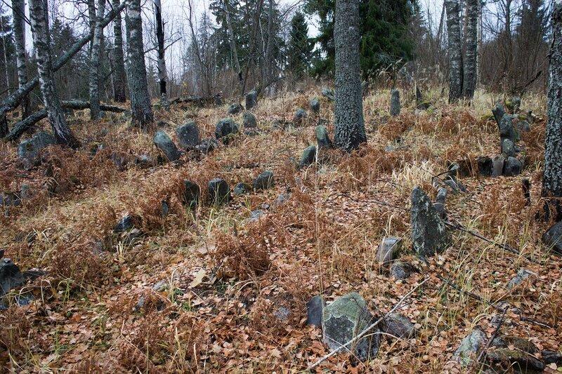 урочище Обитель под Новосокольниками, староверческое кладбище